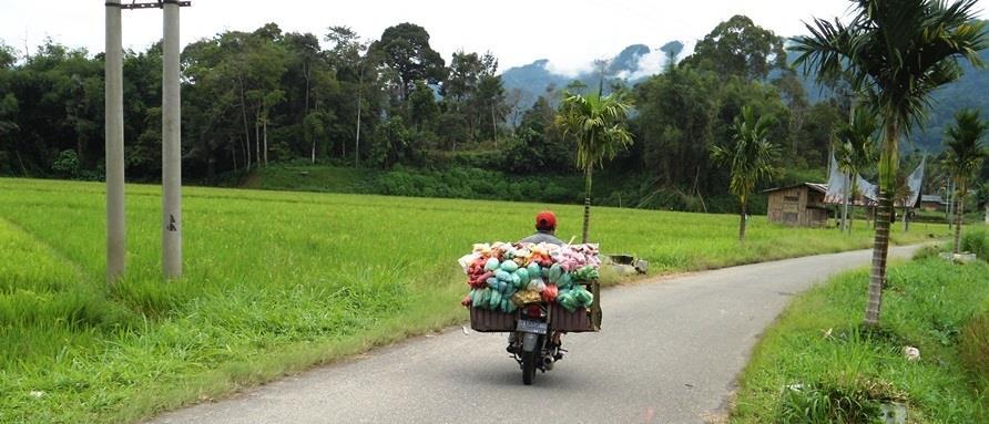 Rondreizen Indonesie Sumatra kruidenvervoer