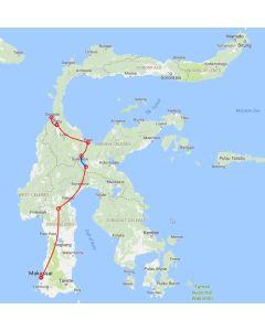 Rondreis Sulawesi: Van zuidelijk naar centraal Sulawesi (10 dagen – 9 nachten)
