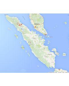 Venture travels rondreis Sumatra Medan en Leuser nationaal park 4 dagen 3 nachten