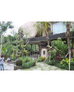 Hotels Bali | Bali collecton Watu Kurung resort 11