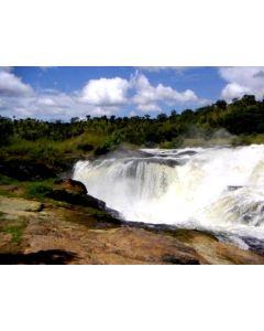 Safari Oeganda: Van Murchison via Kibale & Queen Elizabeth naar Bwindi (12 dagen / 11 nachten)