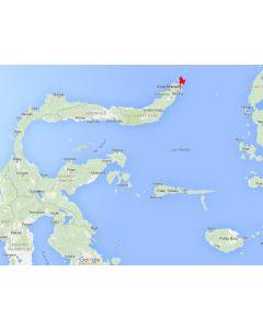 Duiken op Sulawesi - Bastianos Lembeh duikresort  (van 3 tot 14 nachten)