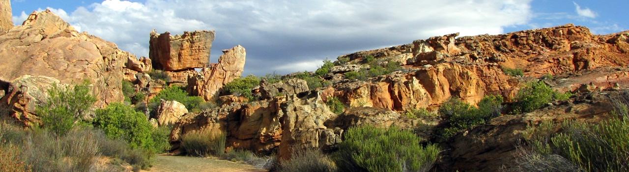 Zuid Afrika Cederberg
