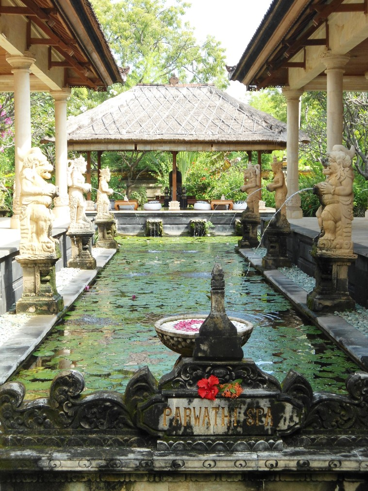 Venture travels Bali collection luxe