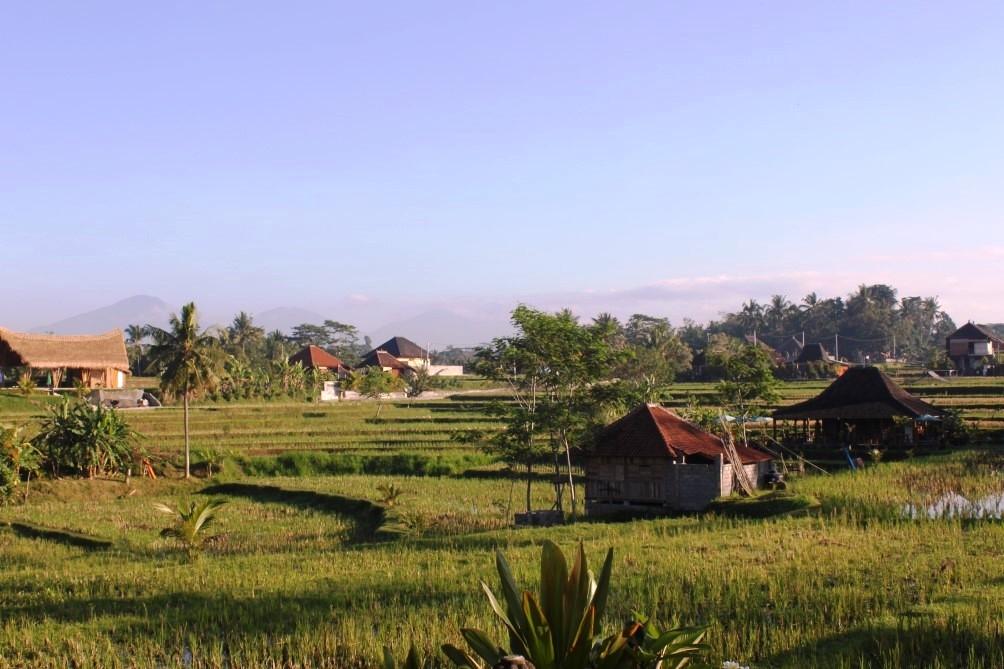 Rondreizen Bali
