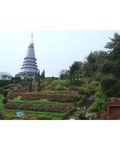 Thailand: Het mooie noorden van Thailand (7 dagen / 6 nachten)